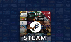 Random ($2 - $50) Steam GIFT CARD (US)